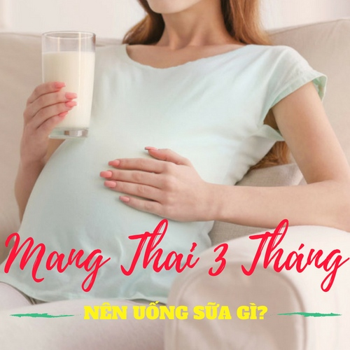 [Mang Thai 3 Tháng Đầu Nên Uống Sữa Gì?] Top 7 Loại Sữa Tốt Cho Thai Nhi 2018